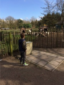 bezoek bij de 7 geitjes